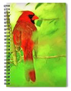 Hiding Behind The Leaves - Male Cardinal Art Spiral Notebook