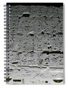 Hieroglyphics Spiral Notebook