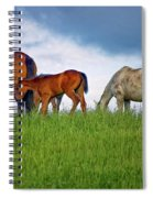 High Browsers Spiral Notebook