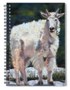 High Country Friend Spiral Notebook