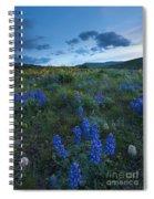 High Desert Dusk Spiral Notebook
