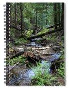 High On Mt. Spokane Spiral Notebook