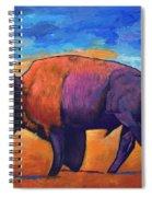 High Plains Drifter Spiral Notebook