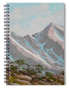 High Sierras Study IIi Spiral Notebook