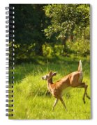 High Tailing It Spiral Notebook