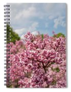 Highland Park Lilacs Detail Rochester Ny Spiral Notebook