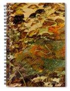 Hiking II Spiral Notebook