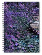 Hiking Trail Infrared Spiral Notebook