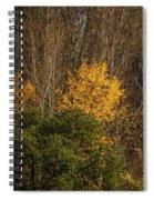 Hillside Autumn Spiral Notebook