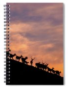 Hillside Elk Spiral Notebook