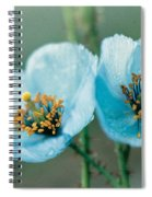 Himalayan Blue Poppy Spiral Notebook