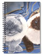 Himalayan Cats  Spiral Notebook