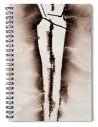 His Embrace Divine Love Series No. 1287 Spiral Notebook