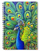 His Splendor Spiral Notebook