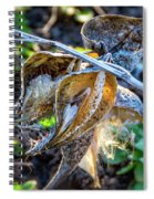 History And Hope Spiral Notebook
