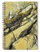 History Of Earth 2 Spiral Notebook