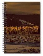 Hoar Frost In Dawn's Light Spiral Notebook