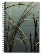 Hoar Frost On Pond 1 Spiral Notebook