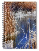 Hoar Frost On Reeds Spiral Notebook