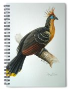 Hoatzin Spiral Notebook