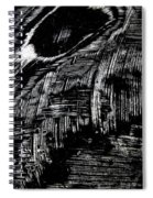 Hog Fish Two Spiral Notebook