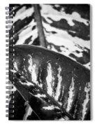 Hoja De La Suerte Spiral Notebook