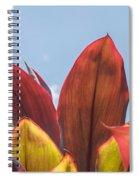 Hojas Rojas 1 Spiral Notebook