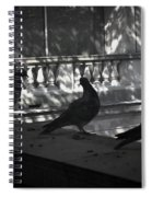 Holding Court Spiral Notebook