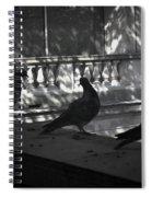 Holding Court Spiral Notebook