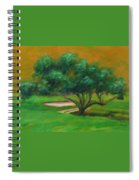 Hole 14 Split The Difference Spiral Notebook