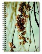 Holiday Art 1 Spiral Notebook