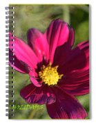 Holiday Art Spiral Notebook