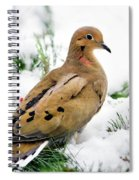 Holiday Dove Spiral Notebook