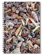 Holiday Harvest Spiral Notebook