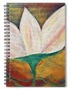 Holiness Spiral Notebook