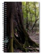 Hollow Spiral Notebook