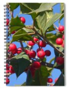 Holly Berries On A Wintry Day I Spiral Notebook