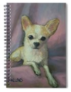 Holly The Chihuahua Spiral Notebook