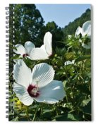 Hollyhock At Sunrise Spiral Notebook