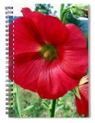 Hollyhock Hill Spiral Notebook