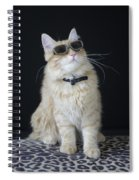 Hollywood Cat Spiral Notebook