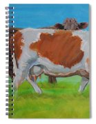 Holstein Friesian Cow And Brown Cow Spiral Notebook