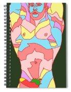 Holy Lights Spiral Notebook
