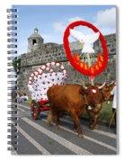Holy Spirit Festivities Spiral Notebook