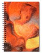 Holy Spiritual Ecstasy. Spiral Notebook
