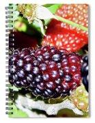 Home Grown Spiral Notebook