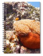 Home Of The Clown Fish 4 Spiral Notebook