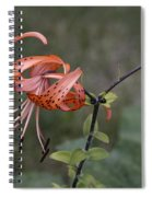 Homestead Tiger Lilly Spiral Notebook