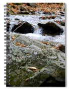 Hometown Series - Blue Ridge Parkway  Spiral Notebook