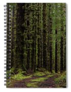 Homeward Spiral Notebook